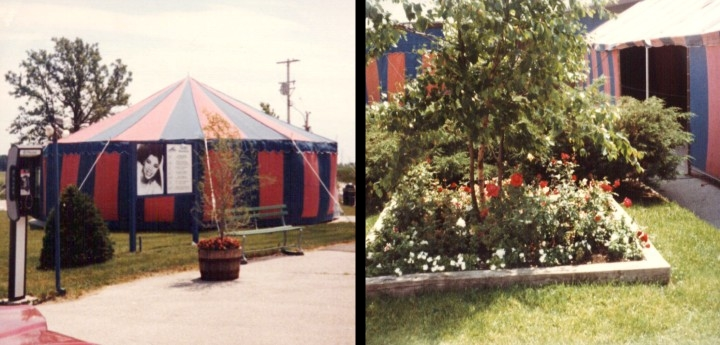 Melody Top Tent and Flower Garden